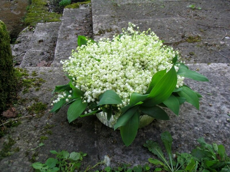 bouquet muguet2