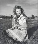1945_meadow_sitting_sheep_by_dd_020_1a