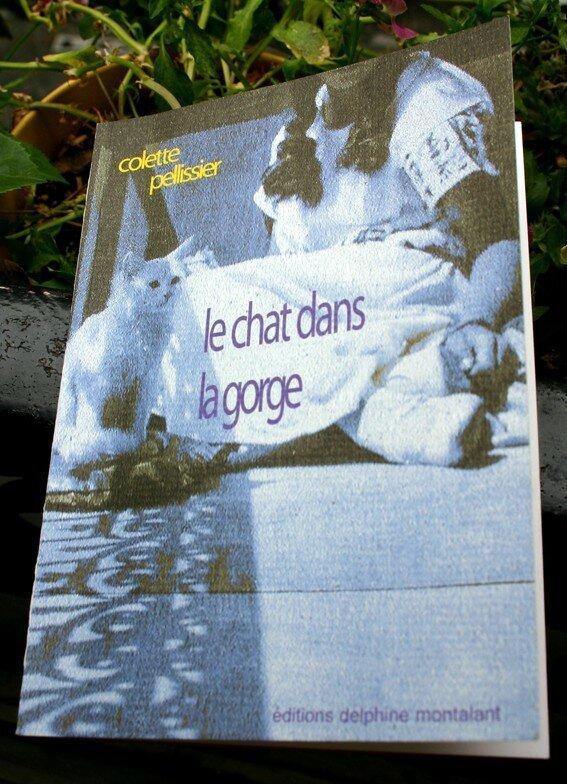 le_chat_dans_la_gorge_final