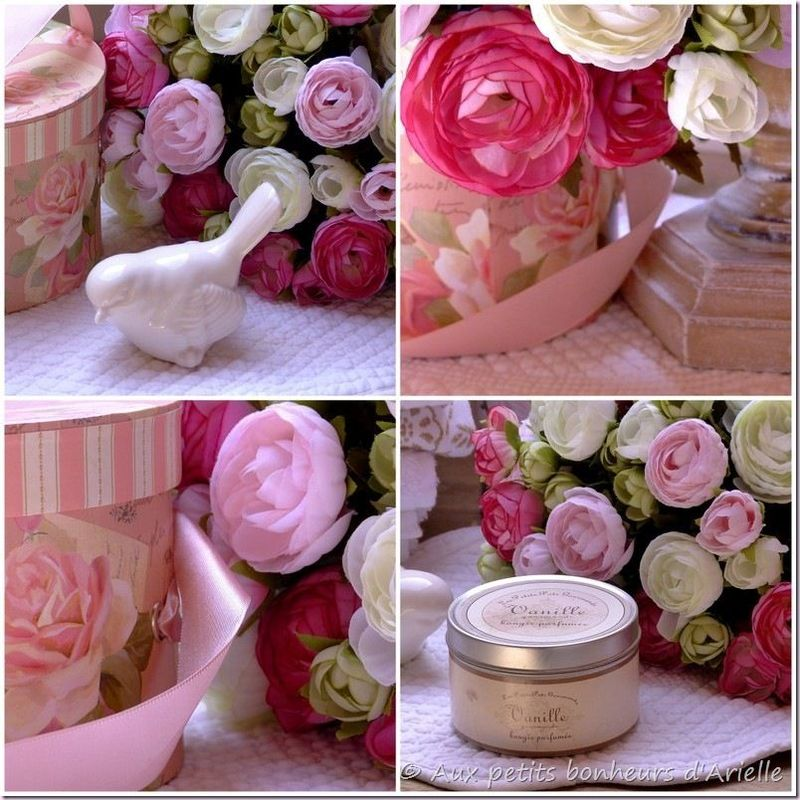 Du rose (4)