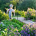 Windows-Live-Writer/Jardin_10232/DSCN0740_thumb
