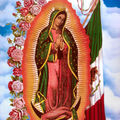 guadalupe-4 (2)