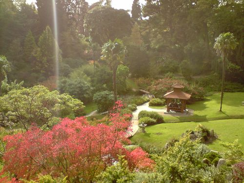 Big view of the Japanese Garden