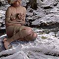 Camélia des neiges. 雪椿