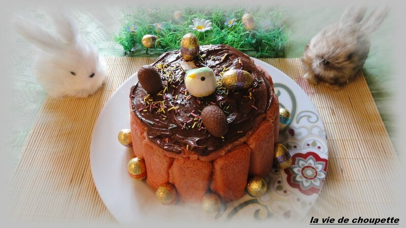 charlotte mousse au chocolat-1667