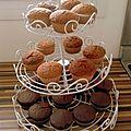 Cupcakes, natures et au chocolat