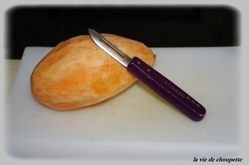 parmentier poulet-4