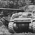 Sherman firefly (luciole). chasseur de chars.