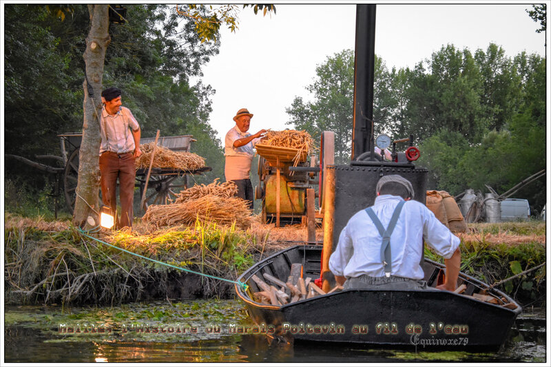 Maillé, l'Histoire du Marais Poitevin au fil de l'eau (3)