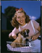 1946-03-12-park_sitting-dog-012-1-by_richard_c_miller-1
