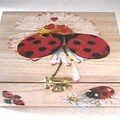 Ladybugs box 2