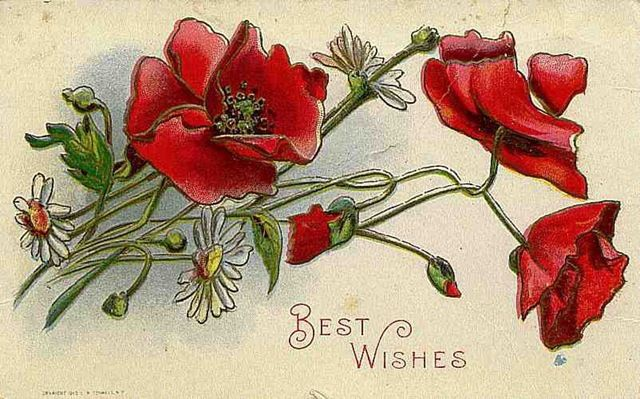 free_vintage_mothers_day_cards_red_poppies