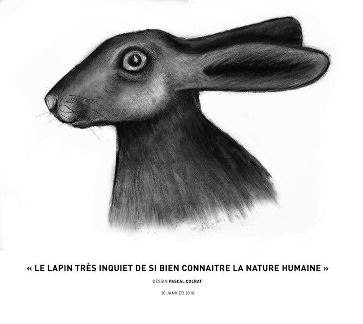 __le_lapin_tre_s_inquiet_de_si_bien_connaitre_la_nature_humaine__