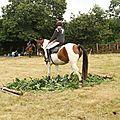 équitation de pleine nature - rallye équestre (60)