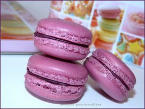 macarons fruits rouges parfum violette (52)