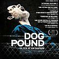 Dog pound de kim chapiron avec adam butcher, shane kippel