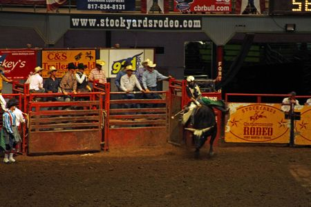 Rodeo_7