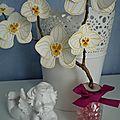 Home déco orchidées