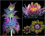 cbstunning-photographs-flowers-illuminated-ultraviolet-light-artnaz-com-1