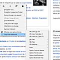 Copy links advanced - addon - firefox - français