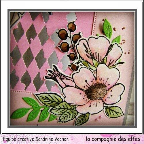 Sandrine VACHON 22 mars dt LCDE (3)