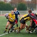 36IMG_1151T