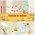 set-6-papiers-r-v-30x30-graines-de-potiron-PS133-2