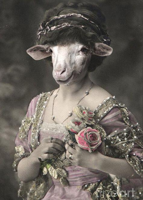 Royal Miss Sheep Human Body Animal Head Portrait Greeting Card