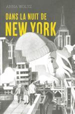 dans la nuit de new york