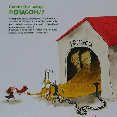 comment ratatiner les dragons p'tit glénat 2