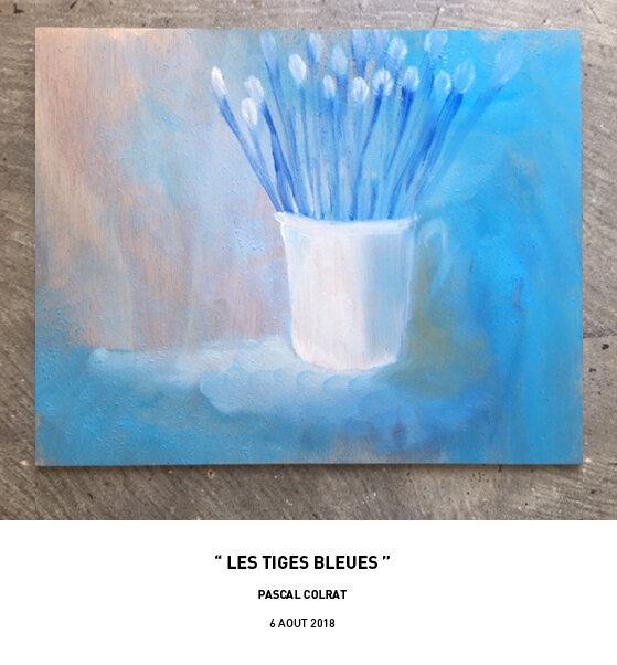 __les_tiges_bleues__