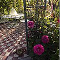 Windows-Live-Writer/jardin_6BD4/DSCF3612_thumb