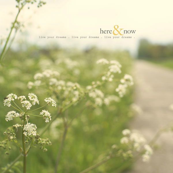 here&now-1
