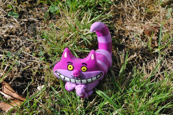 chat de chester (6)