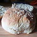 Petits pains pour hamburger