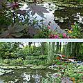 Le jardin d'eau à giverny