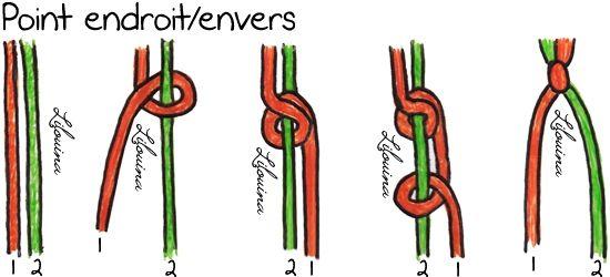 ptendroitenvers