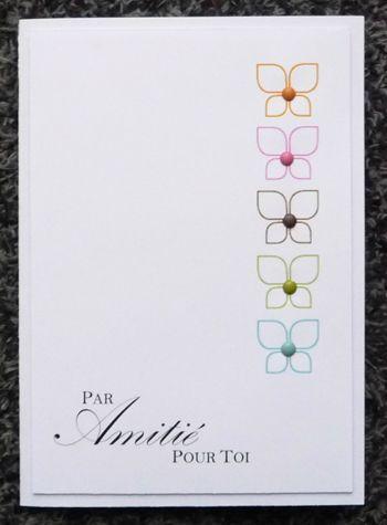 012_papillon_multicouleur