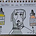 Un chien qui souffre en situation de séparation / flacon personnalisé ou composé universel d'un laboratoire ? / fdb : variées