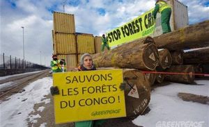 Exploitaion_foresti_re_ill_gale_en_RDC__menace_mondiale