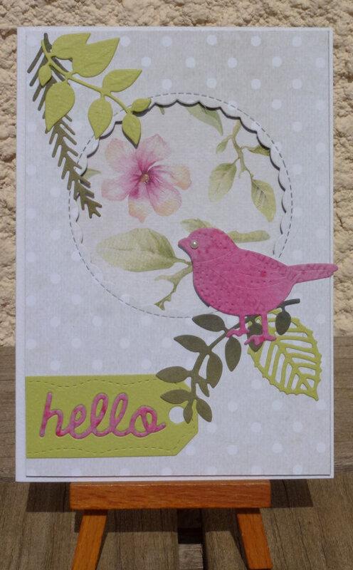 Bird-card01