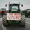 Le suicide comme seul exutoire : la longue descente aux enfers des paysans français