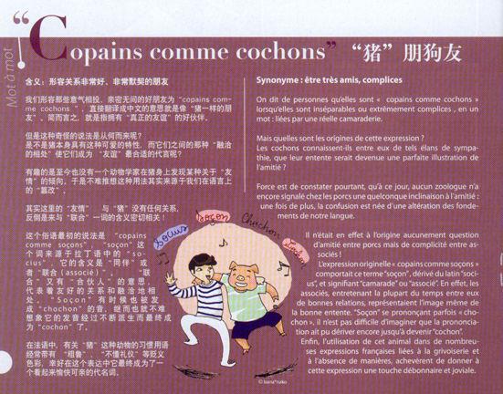 copain_comme_cochon_blog