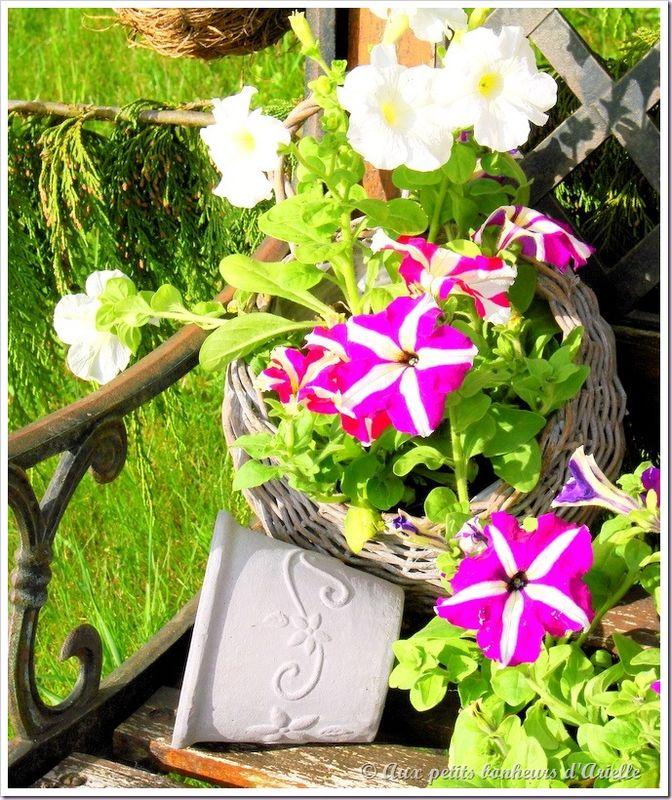 Plantation au jardin (4)