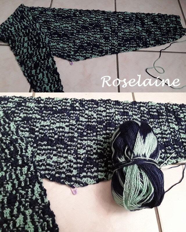 Roselaine Baktus crochet 2