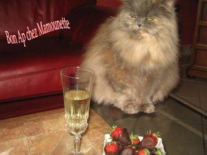 Ruby_et_les_fraises_au_choco_et_champagne_007