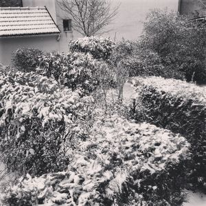Snow_at_home__mars_2013