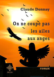 ailes-anges-1c