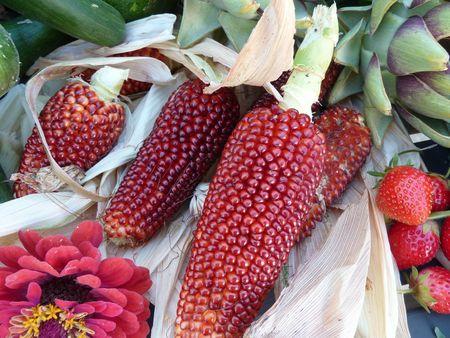 7-légumes variés (5)