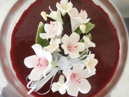 fraisier 1 023